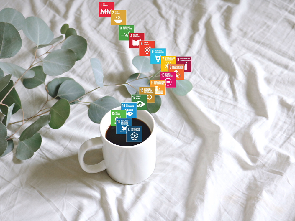 New Fund Targets Global SDG Impact | NordSip