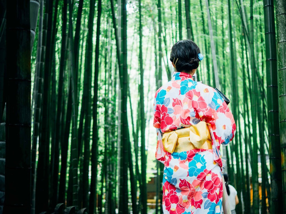 Länsförsäkringar Opens Kimono on Green Bond Investments ...